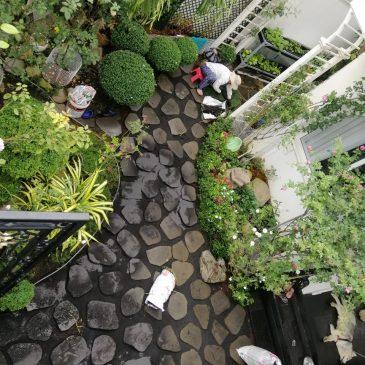 Thiết kế sân vườn đẹp thể hiện đẳng cấp gia chủ